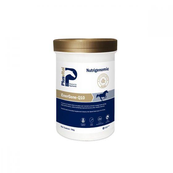 Plusvital - energene - Q10